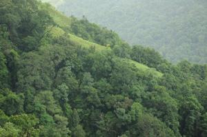 WESTERN-GHATS-Kerala-CS