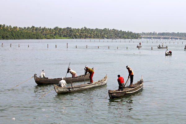 Ashtamudi-Lake-fishing-Big
